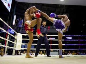 muay thai training in west los angeles